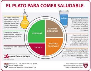 Imagen 2. El Plato para Comer Saludable de la Escuela de Salud Pública TH Chan de Harvard. The Nutrition Source